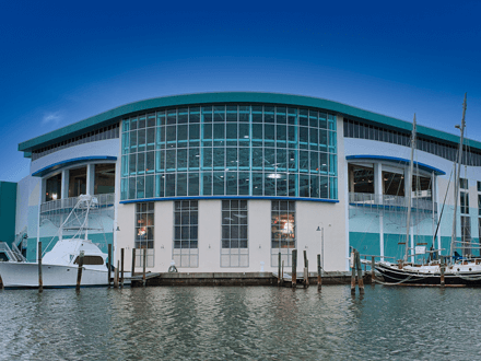 $80 Million Clearwater Marine Aquarium Expansion Completed